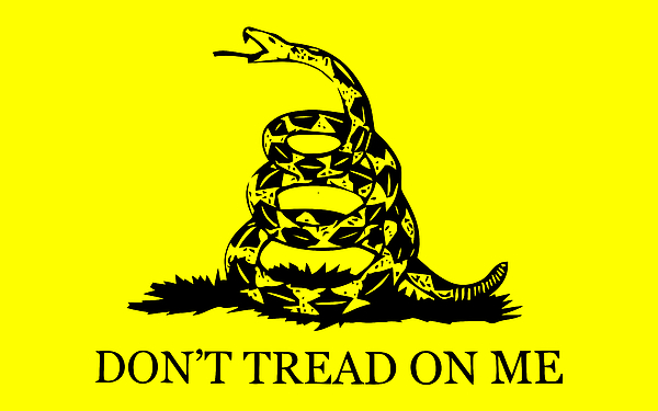 Don't Tread On Me Flag Print by War Is Hell Store
