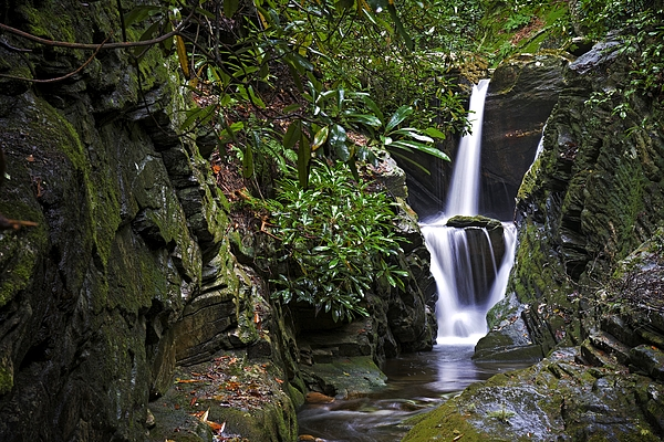 Matt Plyler - Dugger Creek Falls - North Carolina Waterfalls Photos