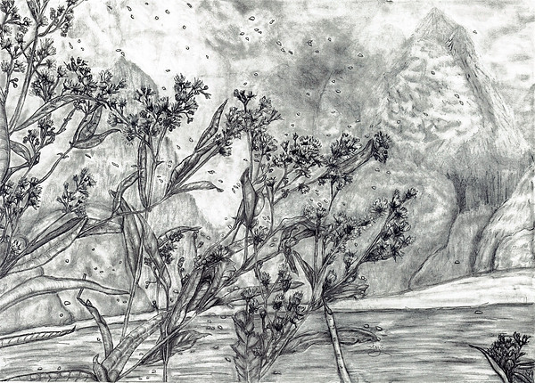 Dunbar Cave Clarksville Tn Print by Joy Neasley