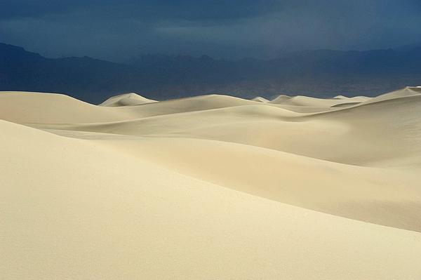 Dune Print by Catherine Lau