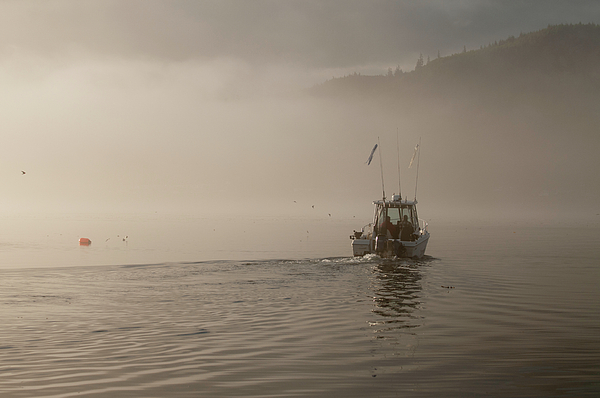 Chad Davis - Early Morning Fishing Boat