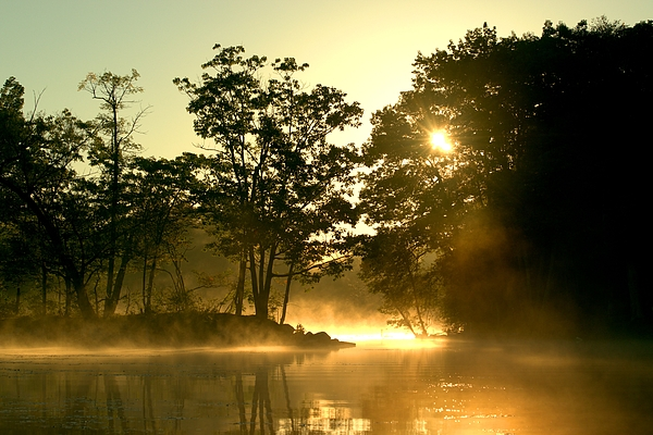 Jan Mulherin - Early Morning Reflection