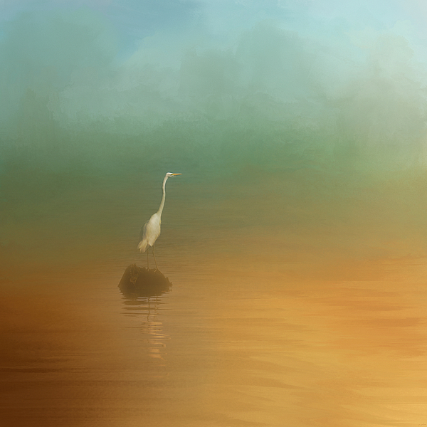 Jai Johnson - Egret at Sea