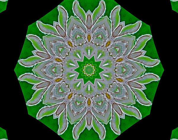 Emerald Green Print by Marsha Heiken