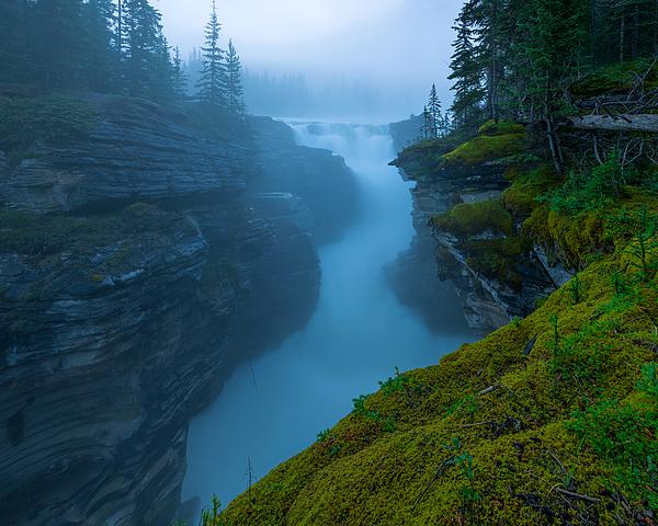 Dustin  LeFevre - Enchanting Mist