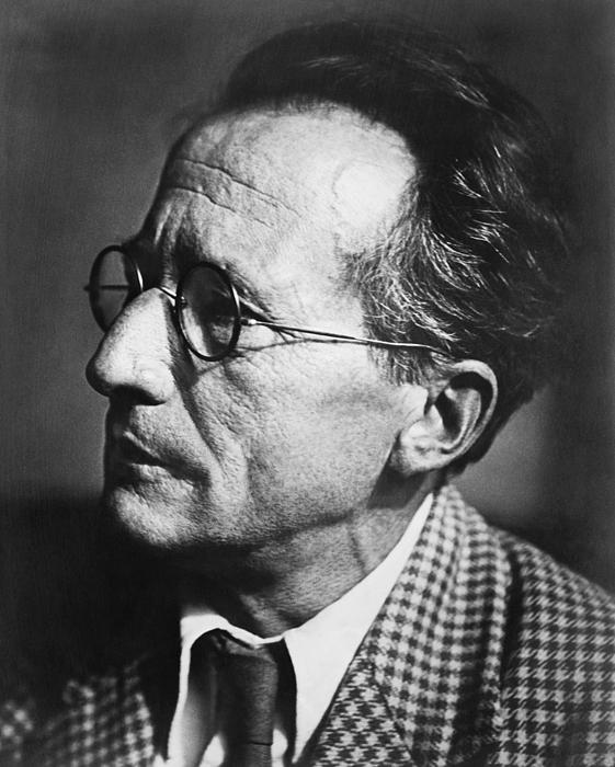 Erwin Schrodinger, Austrian Physicist by Omikron