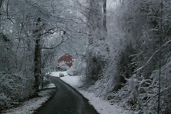 Esso Barn In Winter Print by Renee Summers
