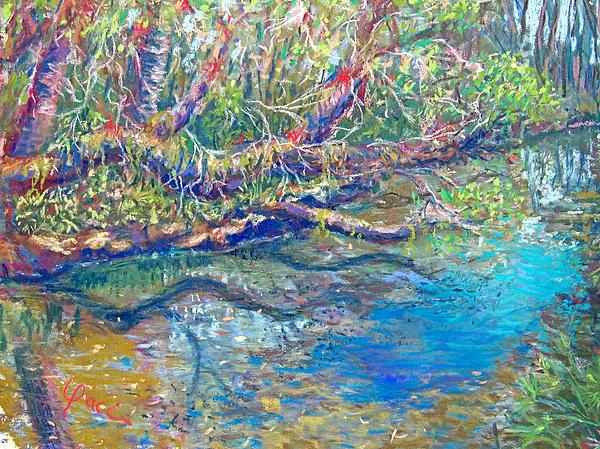 Estero River West Print by Laurie Paci