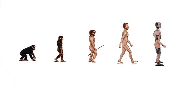 Evolution Of Rob Print by Jennifer Lynch