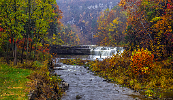 Falls Fishing Print by Mark Papke