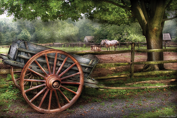 Farm - Horse - Grey Mare Print by Mike Savad