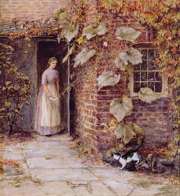 Feeding The Kitten Print by Helen Allingham