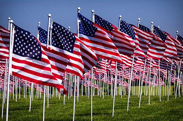 Field Of Flags For Heroes Print by Bill Swartwout
