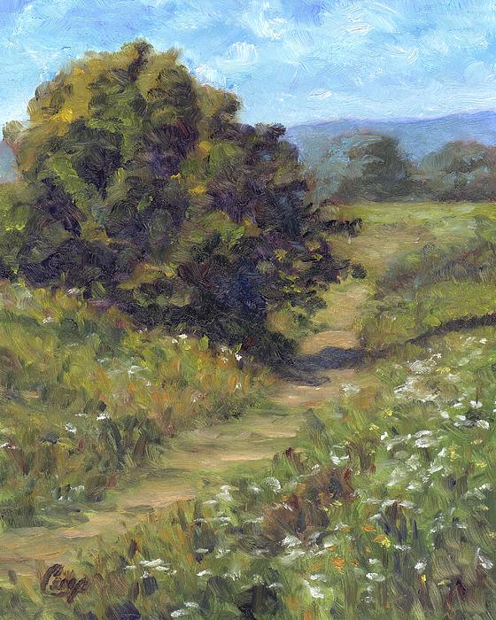 Michael Camp - Fields of Summer