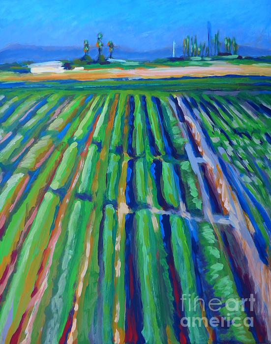 Fields Print by Vanessa Hadady BFA MA