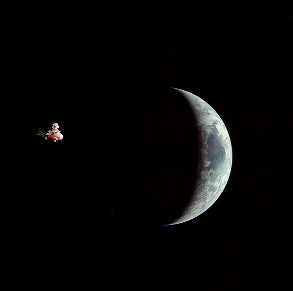 Fifi In Space Print by Michael Ledray