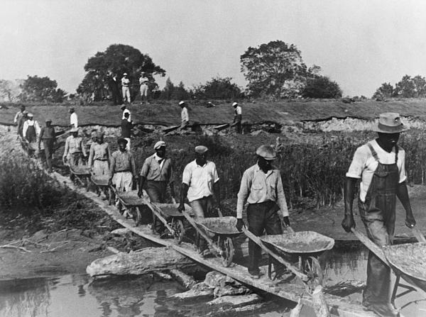 Fifteen African American Laborers Print by Everett