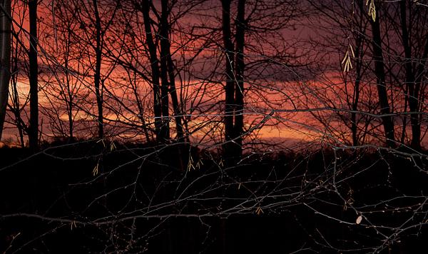 Fire In The Sky Print by Robert Sander