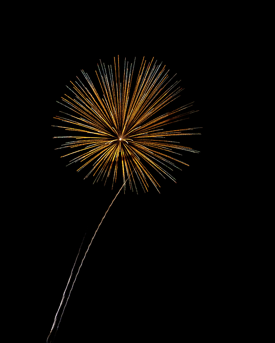 Fire Works Bursts Print by Gary Langley