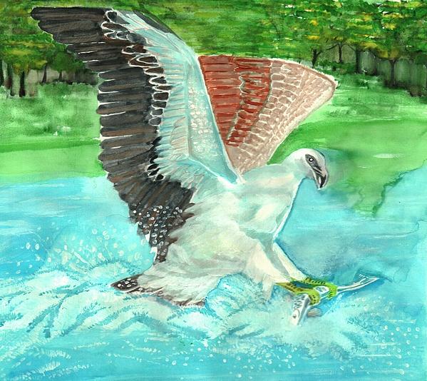 Fish eating eagle by ramon bendita for Fish eating eagle