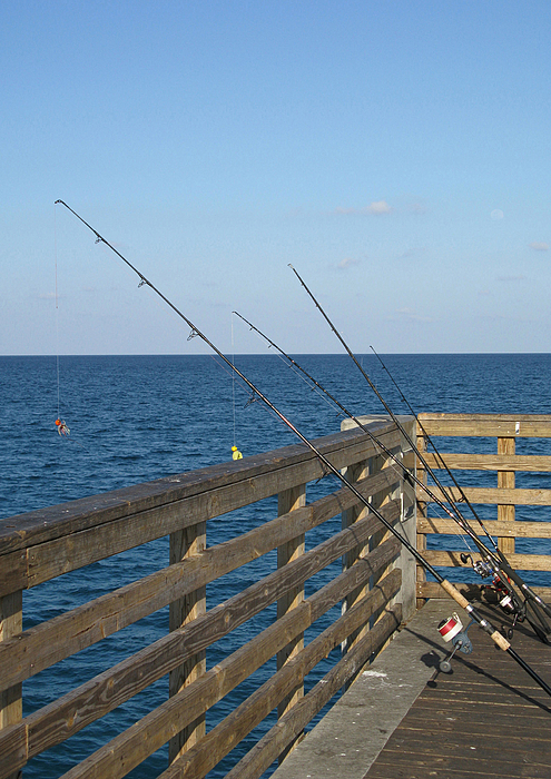 Fishing off lake worth pier by john vincent palozzi for Fishing off a pier