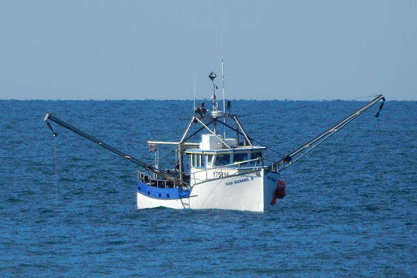 Dan Comeau - Fishing the Big Blue
