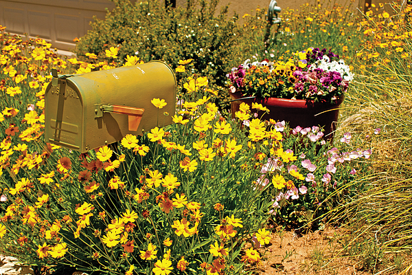 alburquerque nm gay