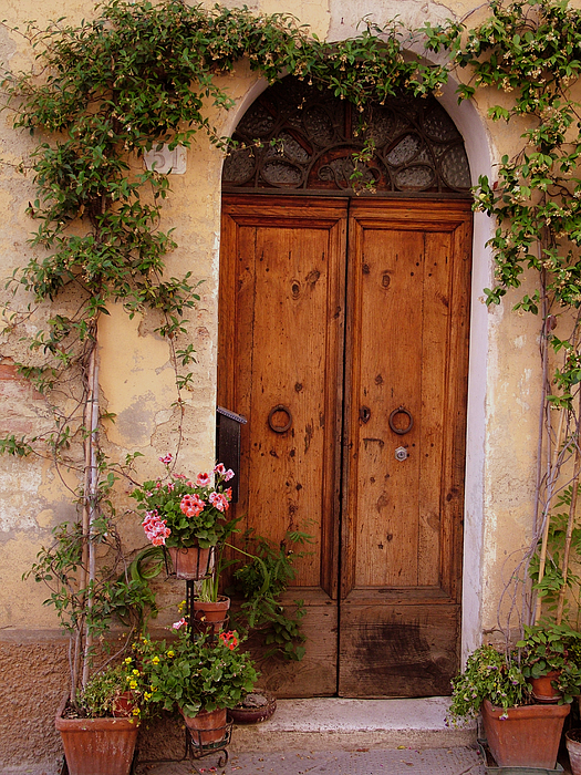 Flowered Tuscan Door Print by Donna Corless