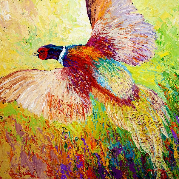 Flushed - Pheasant Print by Marion Rose