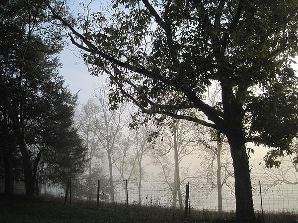 Linda Watson - Fog in August