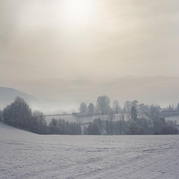 Frosty Landscape Print by Angel  Tarantella