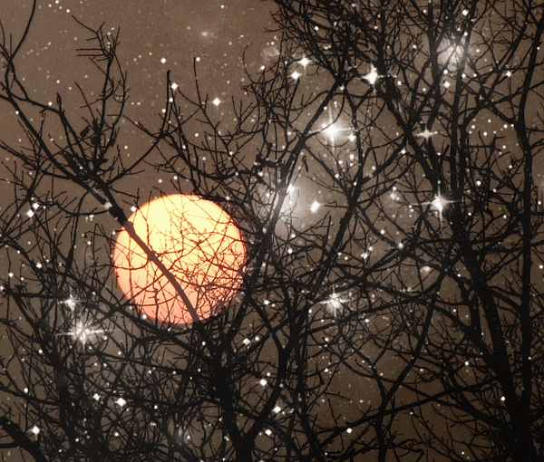 Full moon starry night print by marianna mills