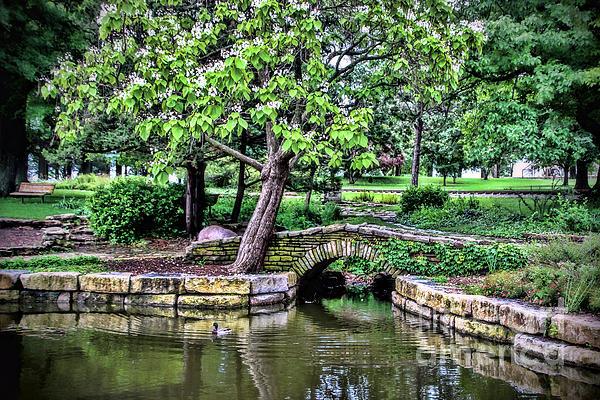 Elizabeth Winter - Gage Park