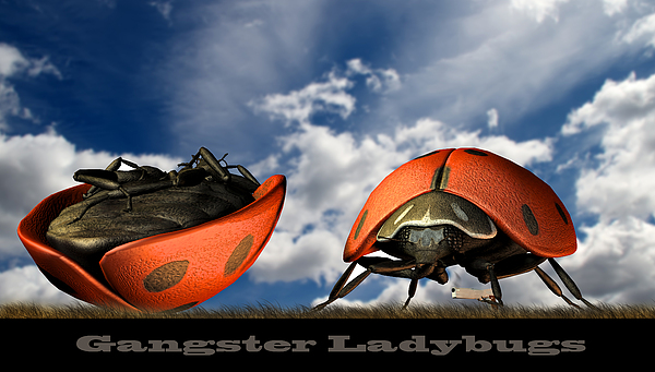 Gangster Ladybugs Nature Gone Mad Print by Bob Orsillo
