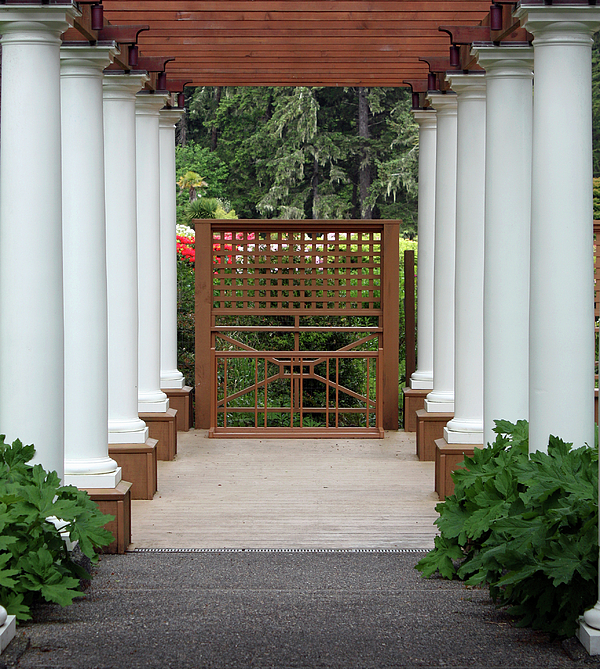 Kami McKeon - Garden Entry