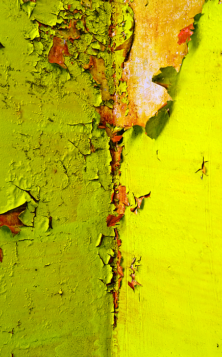 Going Green Print by Skip Hunt