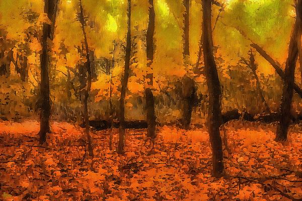 Golden Forest Print by Jeff Breiman