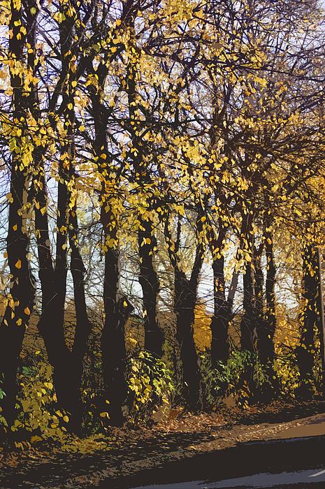 Golden Trees 1 Print by Carol Lynch