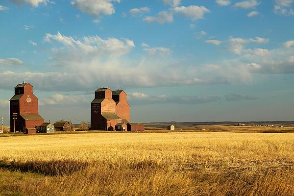 Grain Elevators Stand In A Prairie Print by Pete Ryan