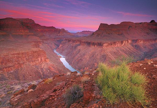 Grand Canyon Sunrise Print by David Kiene