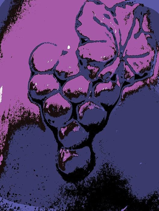 Grapes Of Wrath - Digital Art Print by Marsha Heiken
