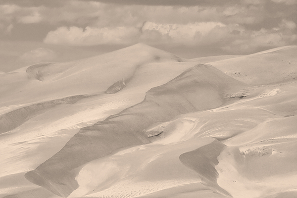 Great Sand Dunes  - In Sepia Print by James BO  Insogna