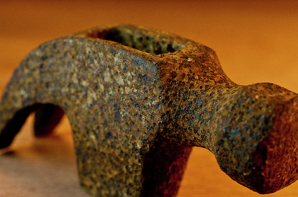 Hammer Without Handle Print by Wilma  Birdwell