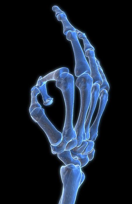 Hand Gesture Print by MedicalRF.com