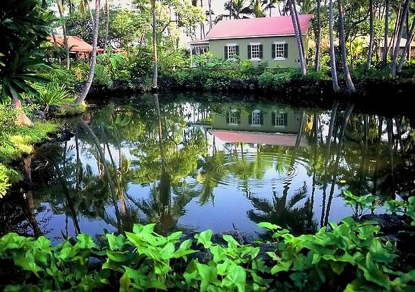 michael koi pond hawaii fish pond by john michael kearney
