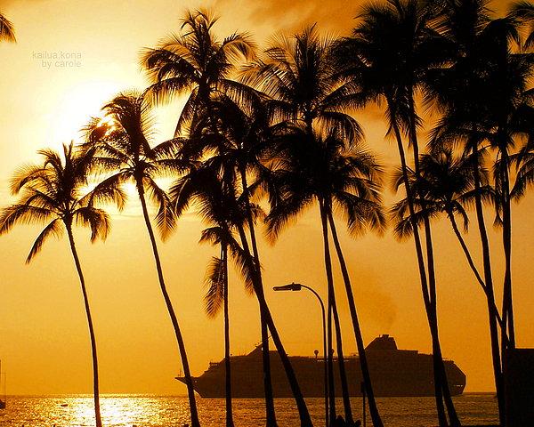 Hawaiian  Cruise Print by Athala Carole Bruckner