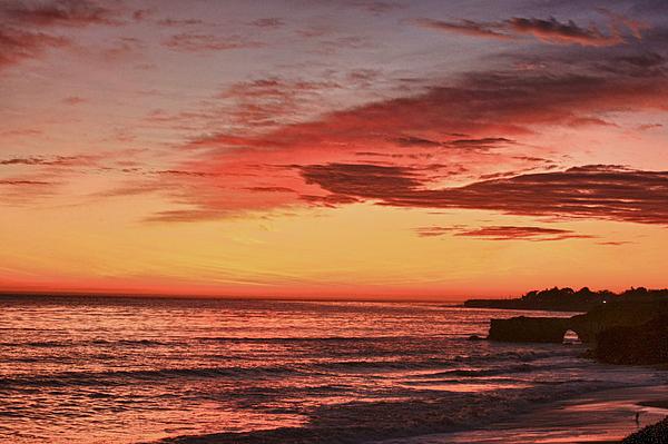 hd 330 Dog Beach 1 HDR Print by Chris Berry