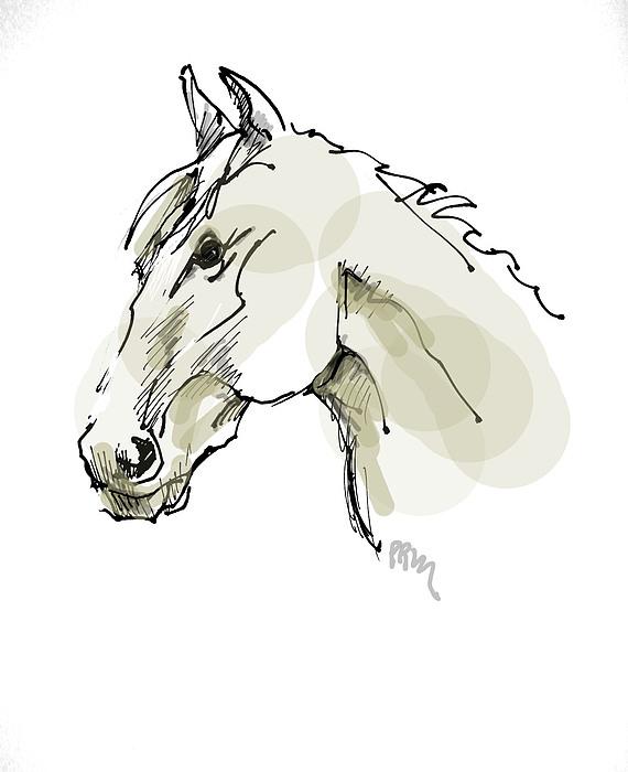 Head Sketch  Print by Paul Miller