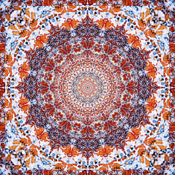 Healing Mandala 2 Print by Bell And Todd