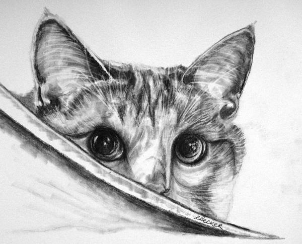 Hide N Seek Print by Susan A Becker
